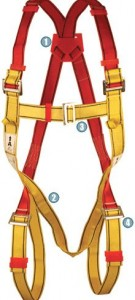FULL BODY – Harness 3 Point 1