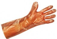 BODYWORKS - Shoulder Length Polyethylene Gloves